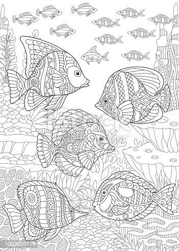 istock Conjunto de peces tropicales. Ζάγκλη, pez payaso, Tang azul ...