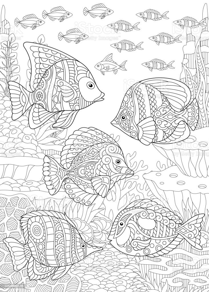 Coloring page of tropical fishes vector art illustration
