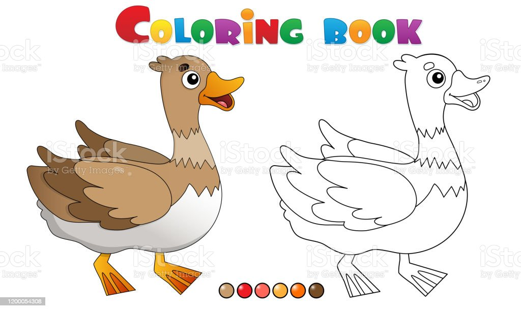Coloring Page Outline Of Cartoon Duck Farm Animals Coloring Book For Kids  Stock Illustration - Download Image Now - IStock