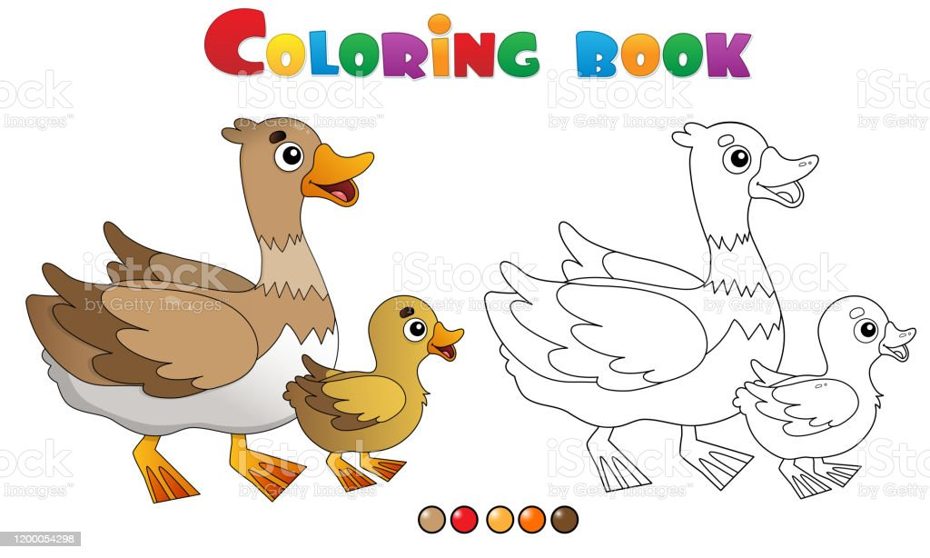 Coloring Page Outline Of Cartoon Duck With Duckling Farm Animals Coloring  Book For Kids Stock Illustration - Download Image Now - IStock
