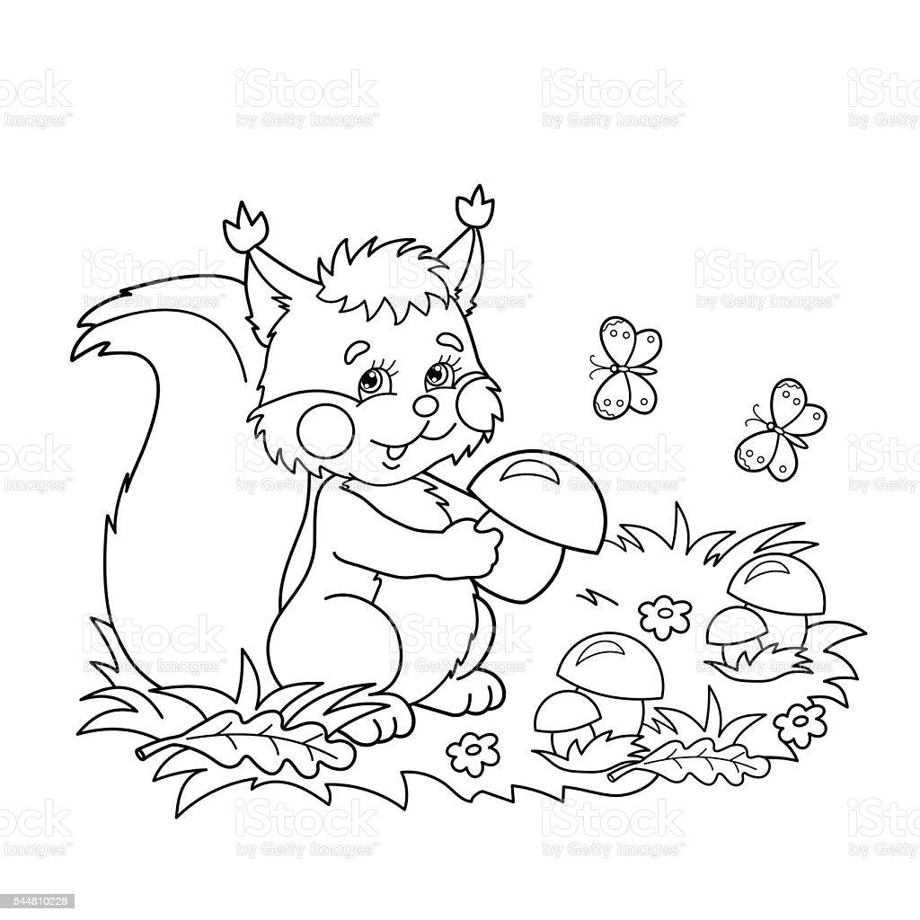 Pagina Da Colorare Di Scoiattolo Con Funghi Per Bambini Immagini