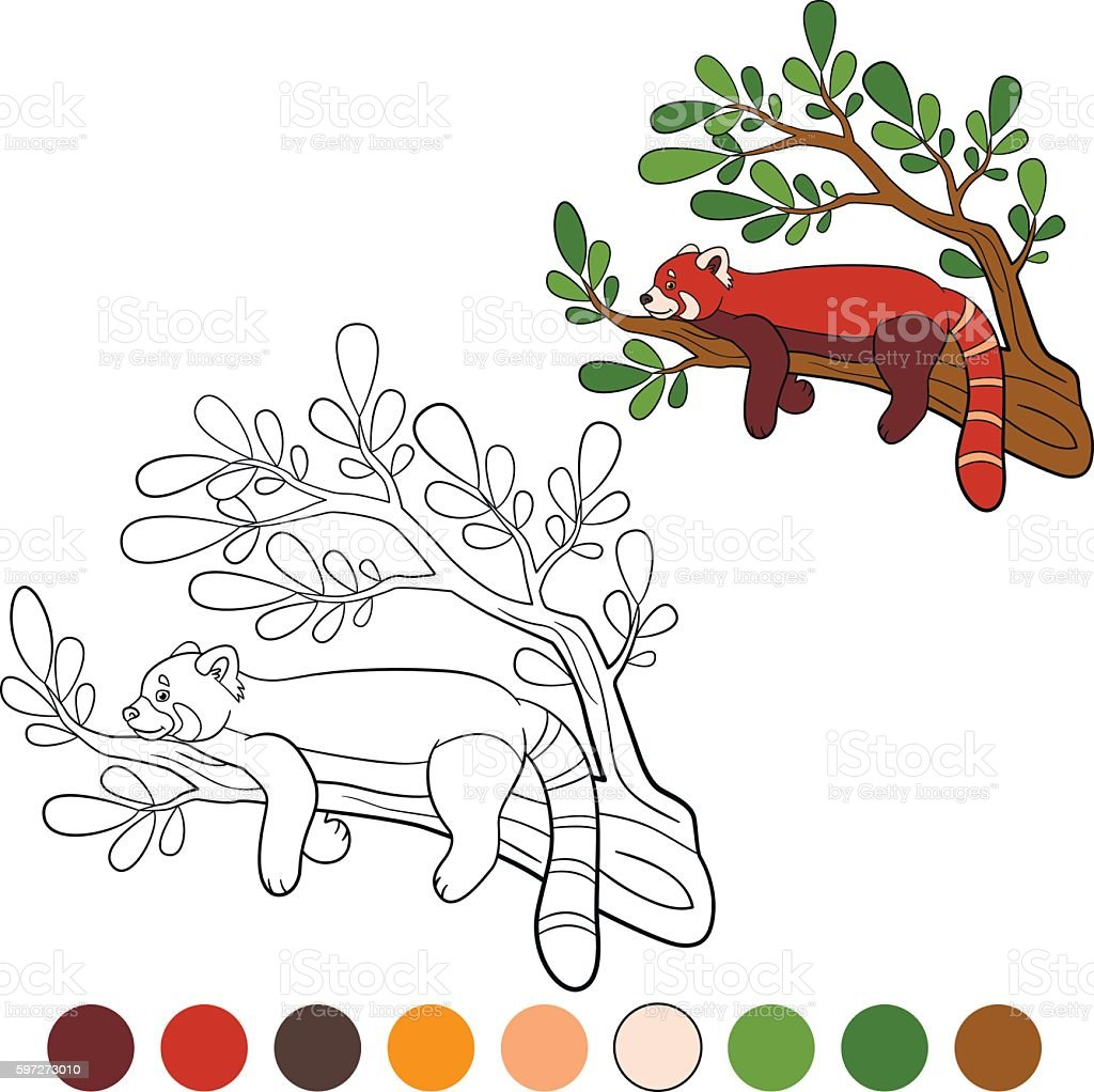 Coloring page: red panda. Little cute red panda. royalty-free coloring page red panda little cute red panda stock vector art & more images of activity