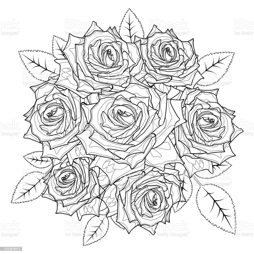 Free Pictures Of Roses To Color, Download Free Clip Art, Free Clip ... | 1024x1024