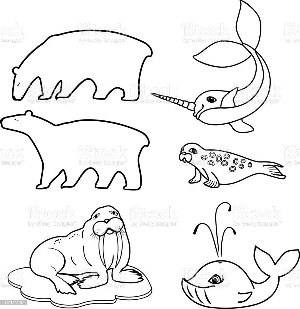 Malvorlagen Reihe Von Verschiedenen Comictiere Der Polaren Fauna