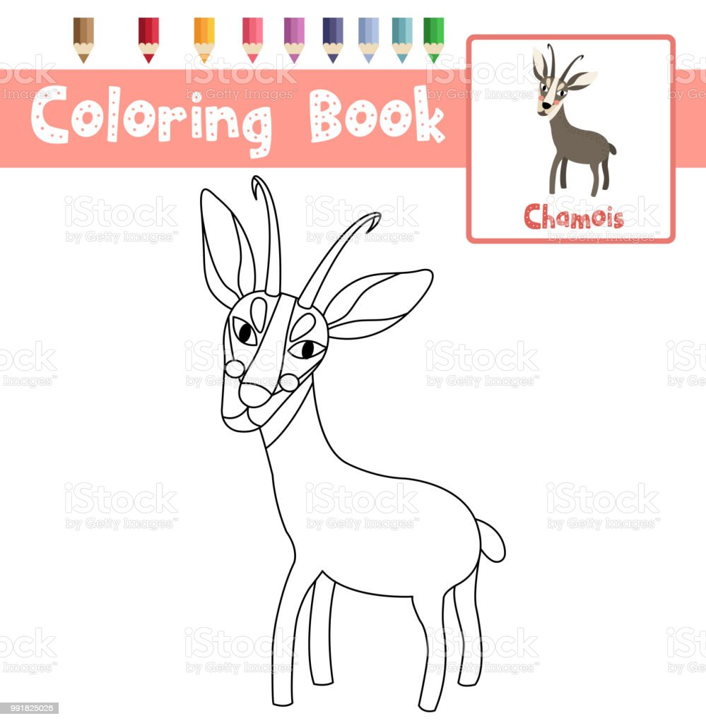 Coloring Page Standing Chamois Animal Cartoon Character Vector Illustration  Royalty Free Coloring Page Standing Chamois
