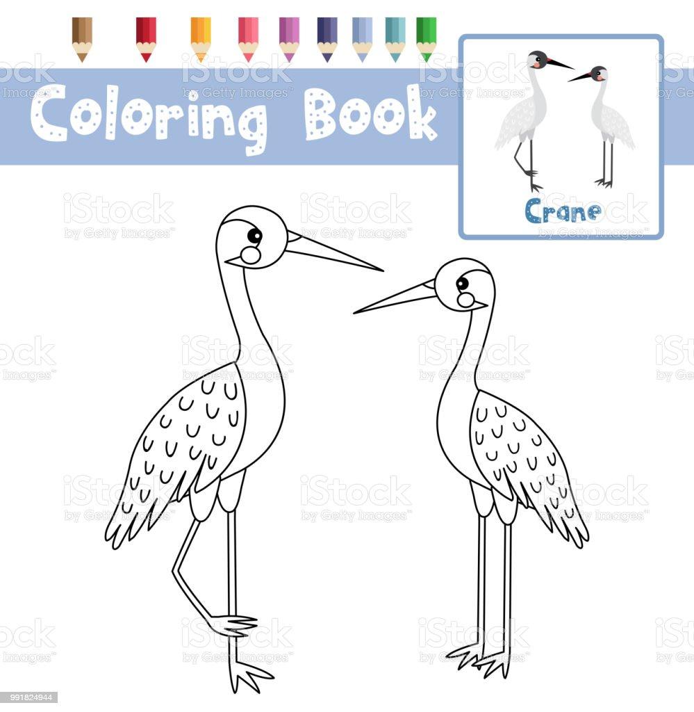 Kleurplaat Pagina Permanent Kraan Vogel Dierlijk Beeldverhaal