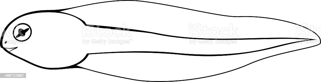 Coloring Page Tadpole stock vector art 488722882 iStock