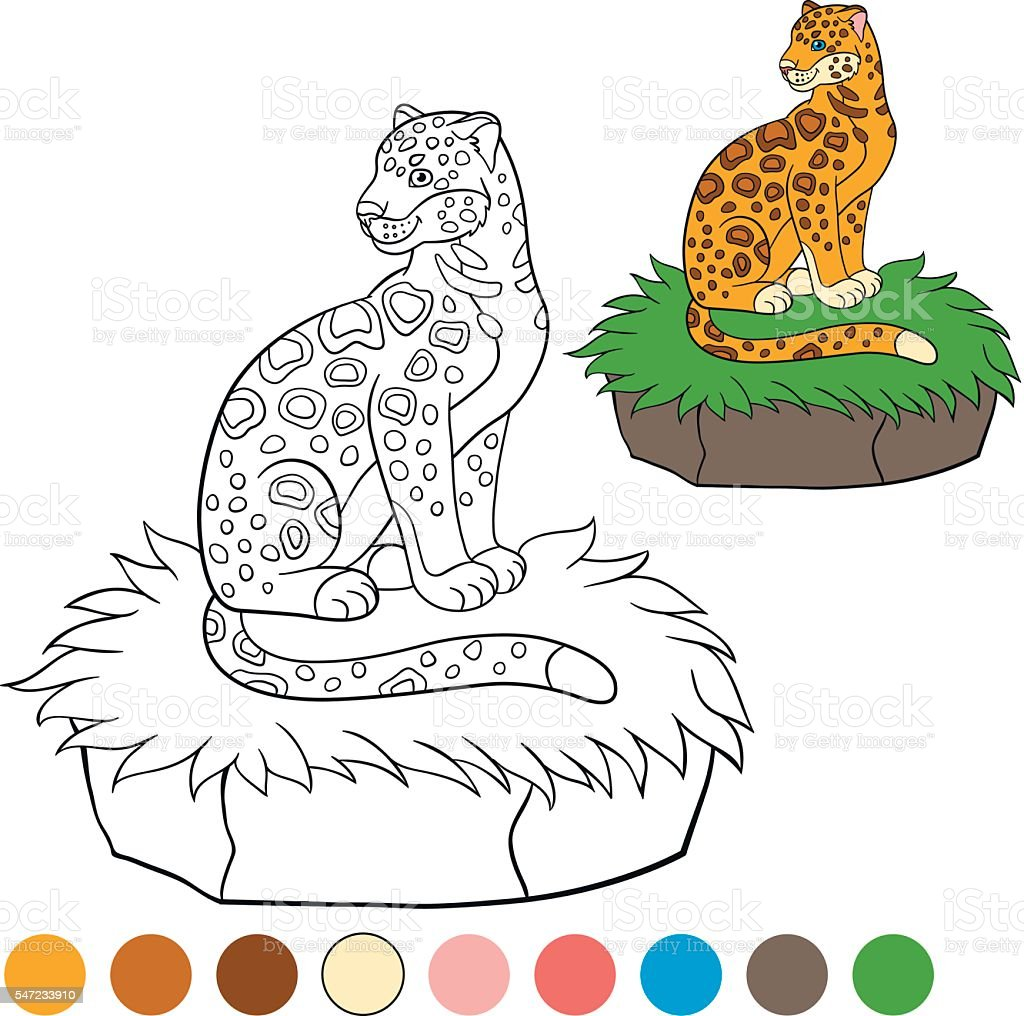 Coloring Page With Colors Cute Jaguar Sits On The Grass Stock Vector
