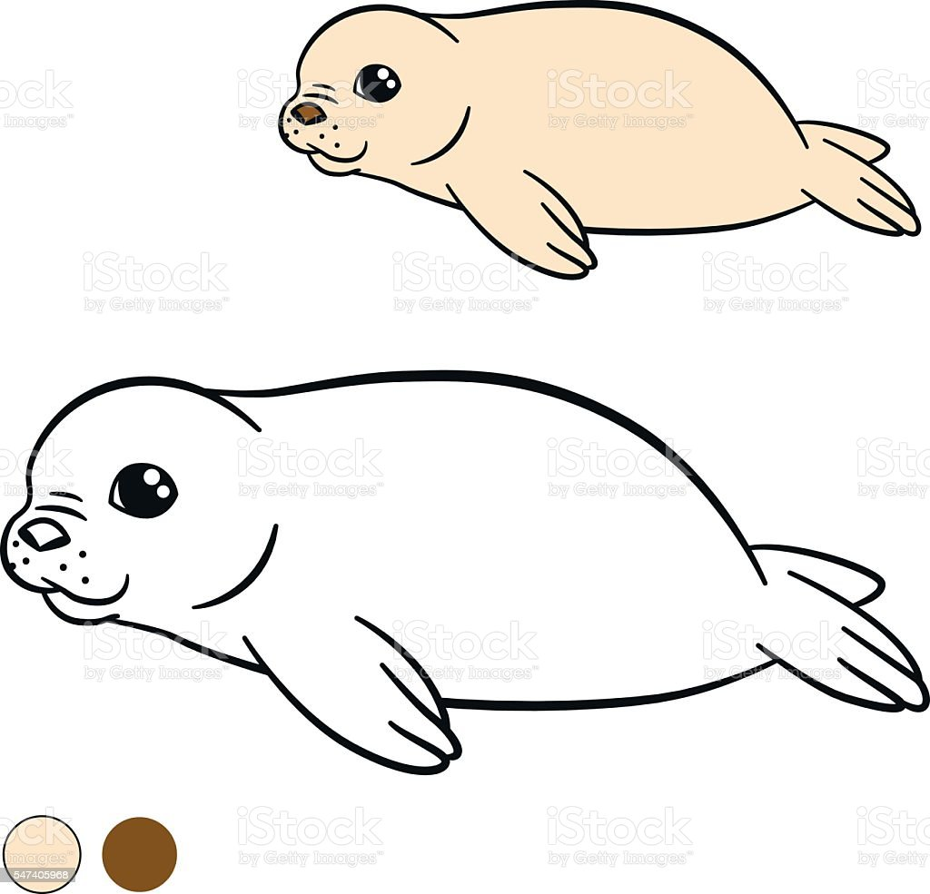 baby sea animal coloring pages - photo#43
