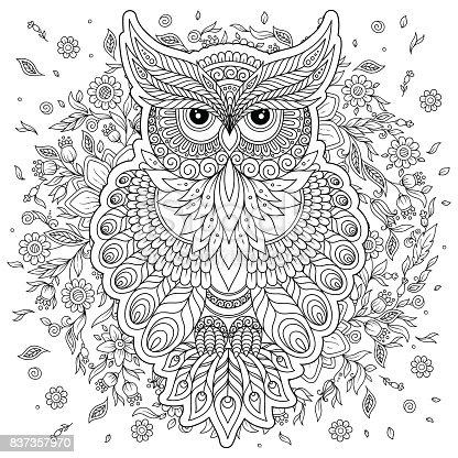 Ilustración de Página Para Colorear Con Búho Lindo Y Marco Flores y ...