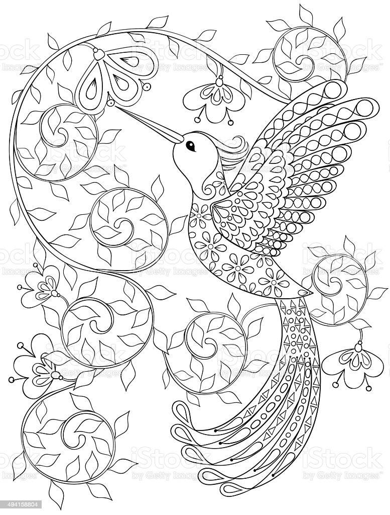 Ilustración de Página Para Colorear Con Hummingbird Zentangle Pájaro ...