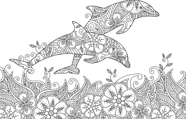Best Dolphin Illustrations RoyaltyFree