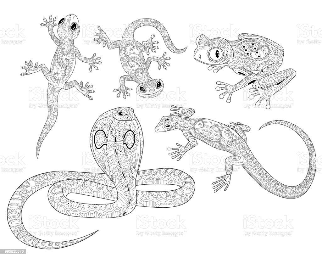 Ilustración de Página Para Colorear De Reptiles En Estilo Patrón y ...