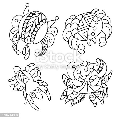 Coloring page with sea and ocean animals suh as crab and shrimp in vector grahic illustration