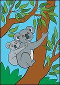 coloring page_koala01_