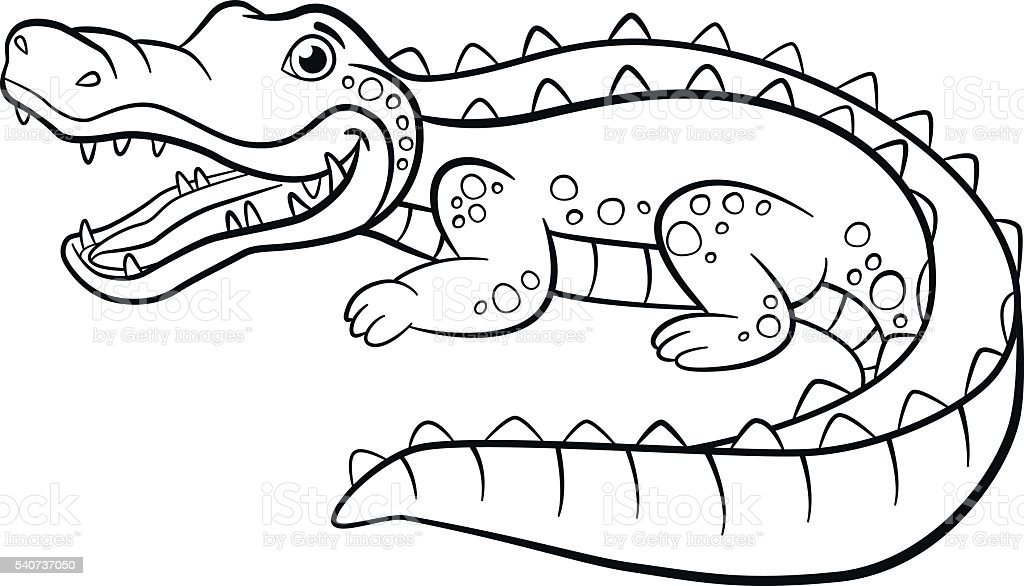 Coloring Pages Animals Little Cute Alligator Stock Illustration Download Image Now Istock