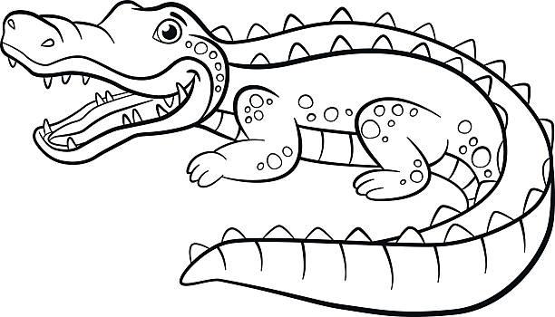 malbücher. tiere. wenig niedlich alligator. - tierfotografie stock-grafiken, -clipart, -cartoons und -symbole