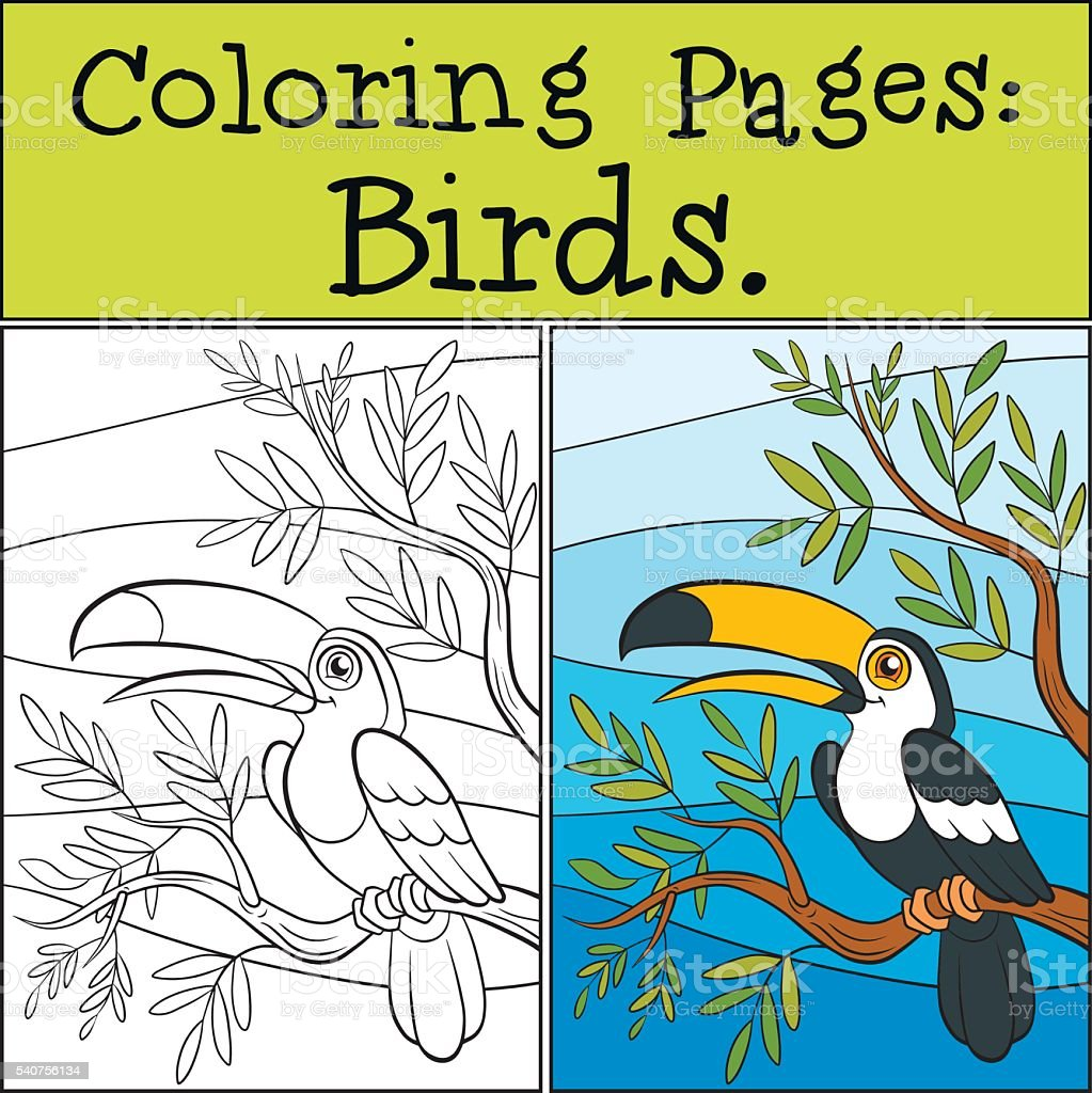 Coloring Pages: Birds. Little Cute Toucan. Royalty Free Stock Vector Art