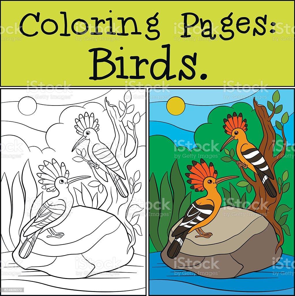 Coloring Pages Birds Two Cute Beautiful Hoopoes Smile Stock Vektor Art und  mehr Bilder von Ast   Pflanzenbestandteil
