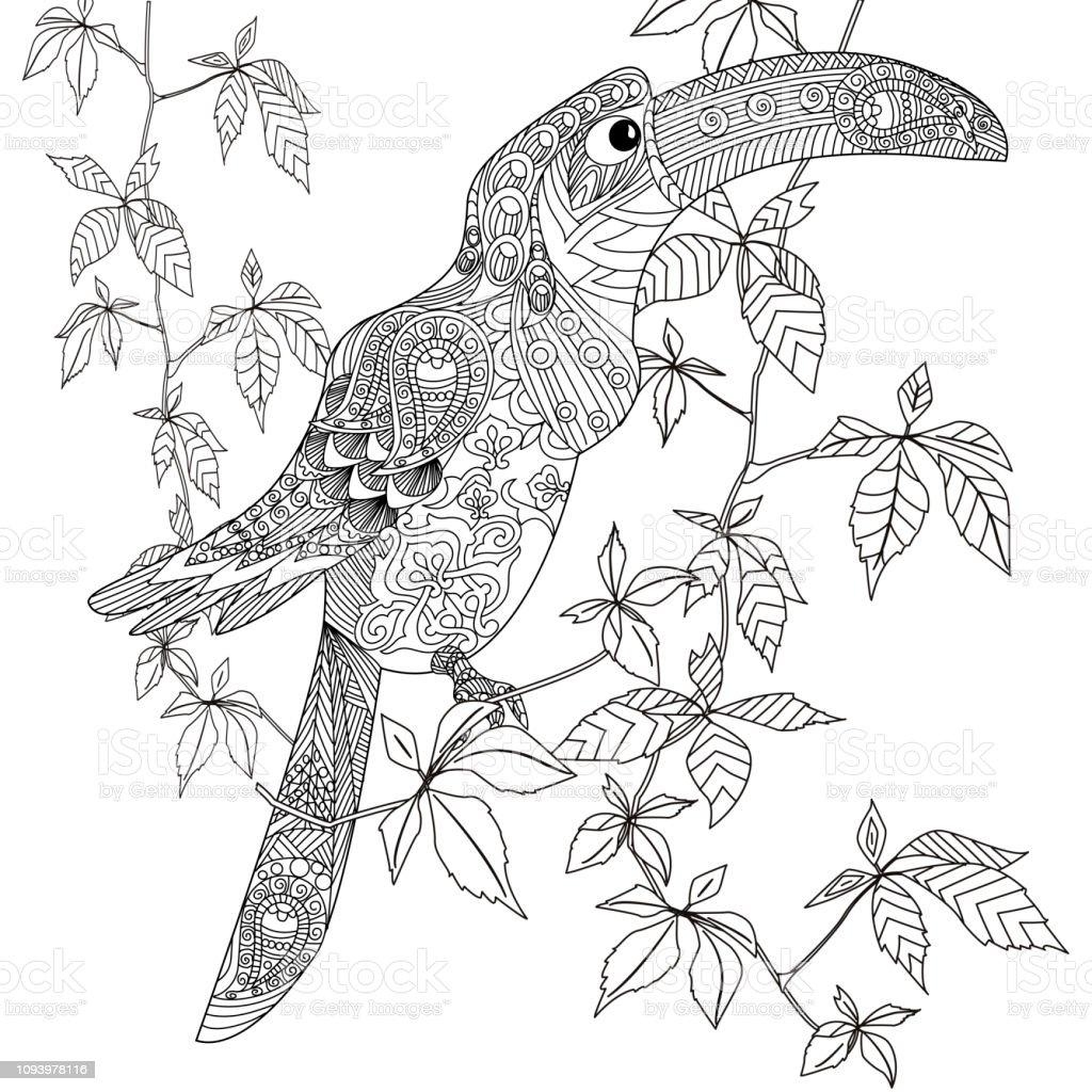 Malvorlagen Ausmalbilder Mit Vogel Antistress Freihand Skizze