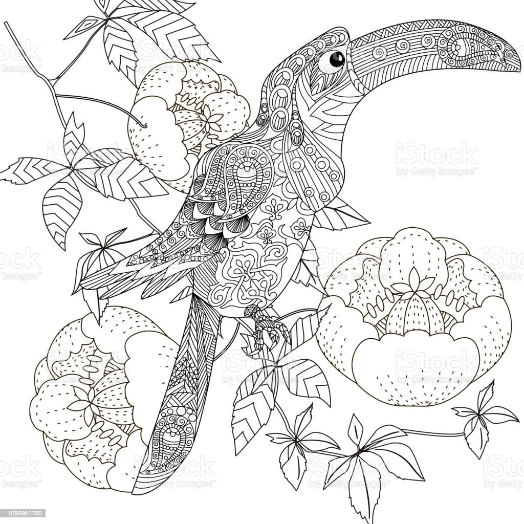 Coloring Pages Colouring Pictures With Bird Antistress Freehand Sketch Drawing With Doodle And Zentangle Elements Stock Illustration Download Image Now Istock