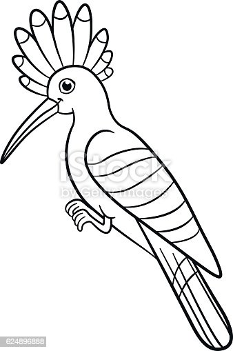 Coloring Pages Cute Beautiful Hoopoe Sits Stock Vector Art