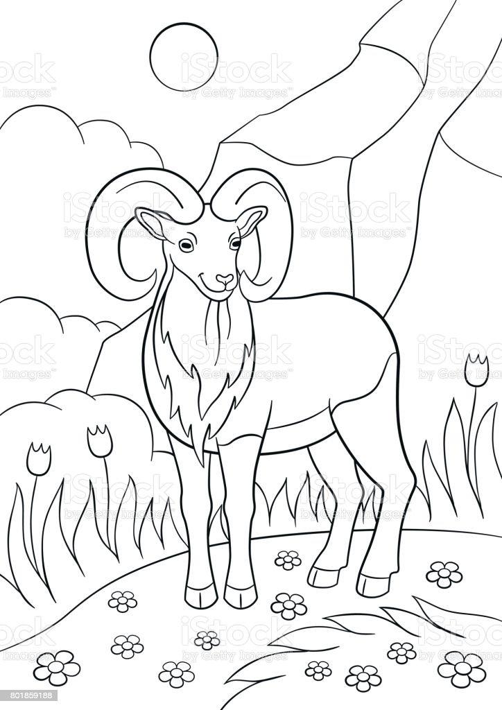 Ilustración de Dibujos Para Colorear Urial Hermoso Lindo Con Grandes ...