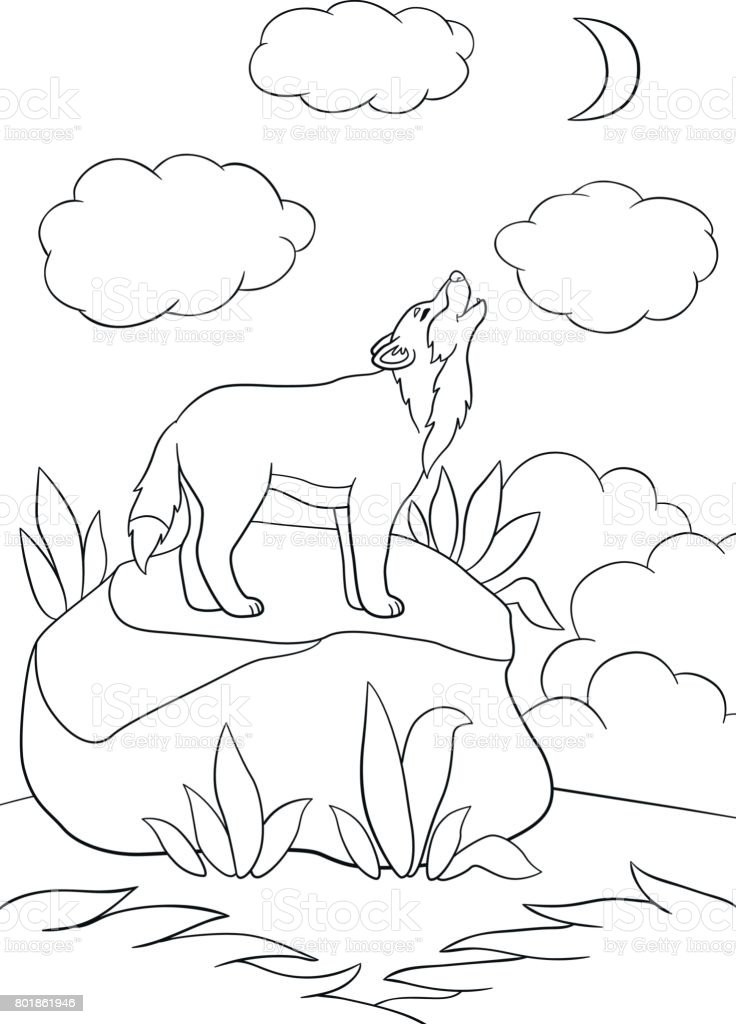 Ilustración De Dibujos Para Colorear Lindo Hermoso Lobo Aullando A