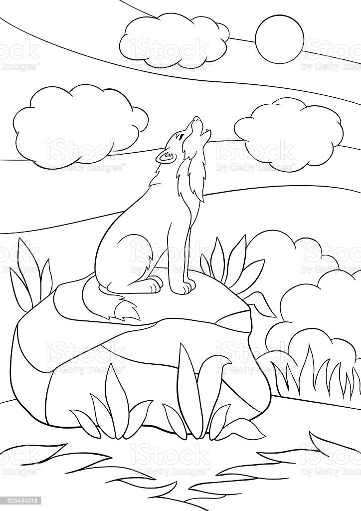coloring pages cute beautiful wolf howling royalty free stock vector art