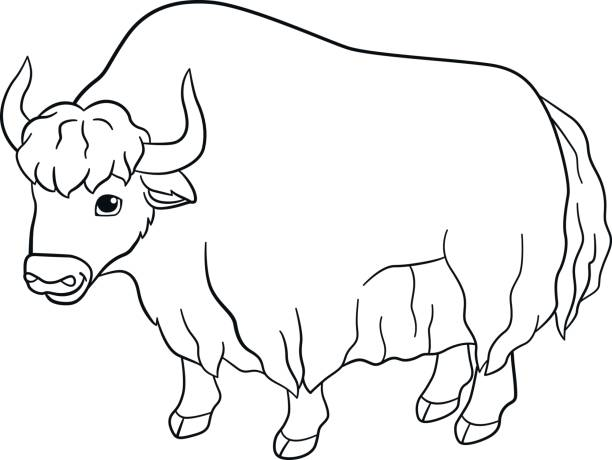 It's just a picture of Soft Yak Coloring Page