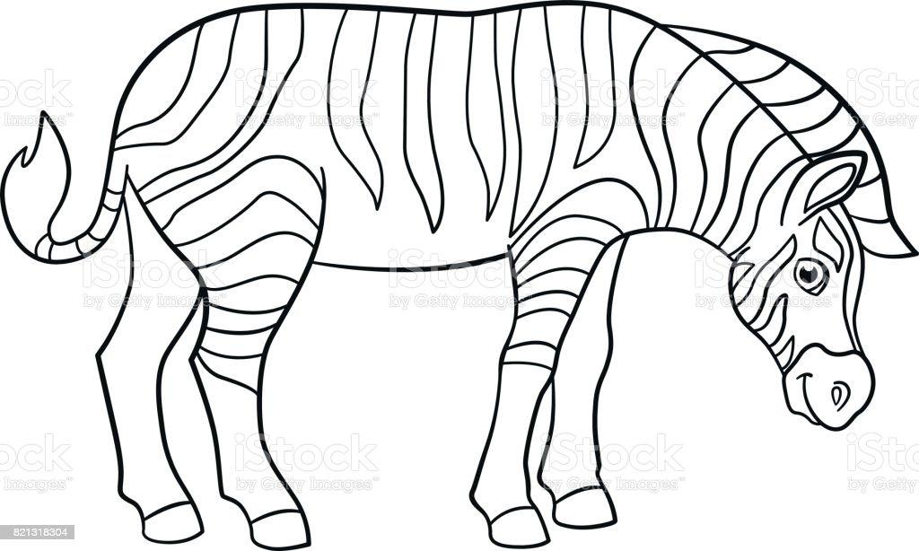 Boyama Sayfalari Sevimli Guzel Zebra Gulumsuyor Stok Vektor Sanati