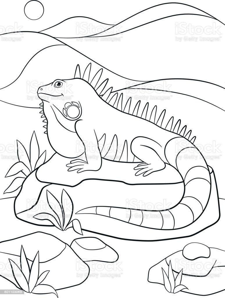 Ilustración de Dibujos Para Colorear Linda Iguana Se Asienta Sobre ...