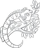 Coloring pages. Cute iguana sits on the tree branch.