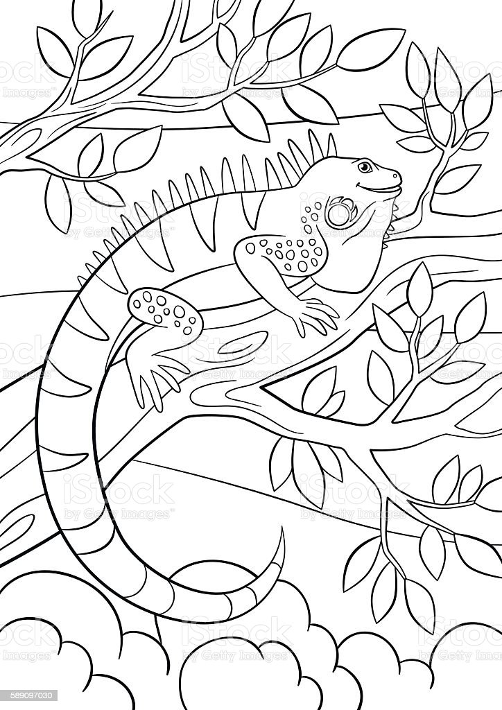 Coloring Pages Cute Iguana Sits On The Tree Branch Stock Illustration Download Image Now Istock