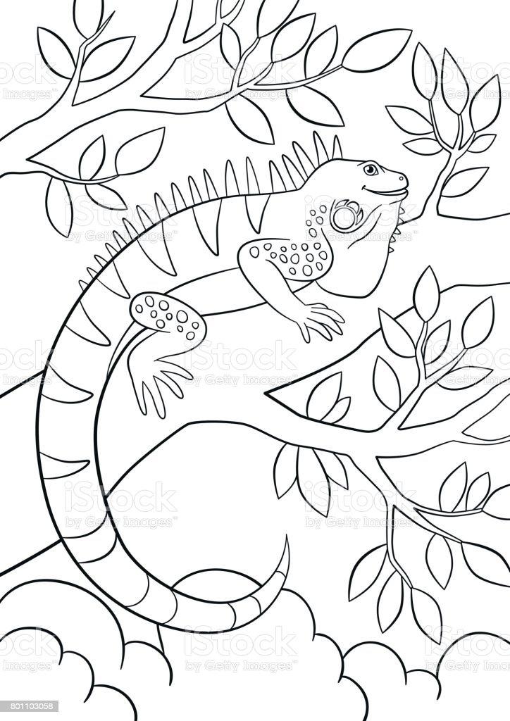 Ilustración de Dibujos Para Colorear Linda Iguana Se Encuentra En La ...