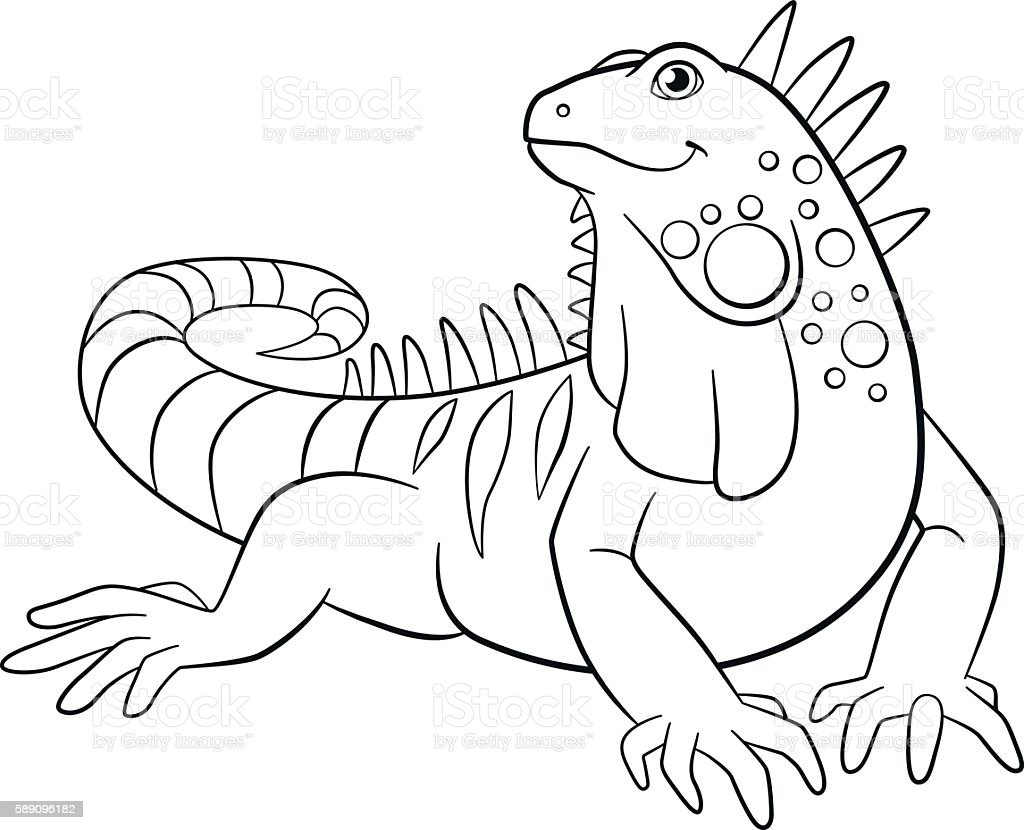 Coloring Pages Cute Iguana Smiles Vecteurs Libres De Droits