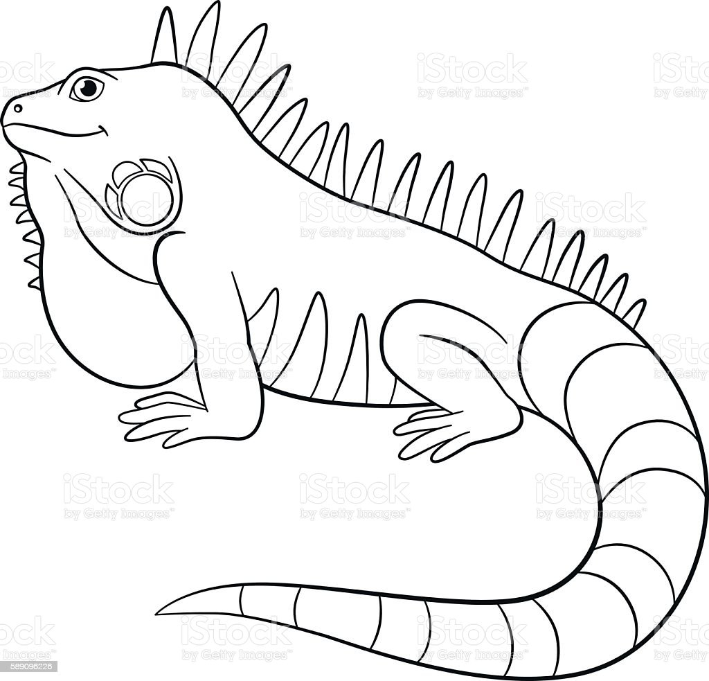 Coloring pages cute iguana smiles stock vector art more for Green iguana coloring page