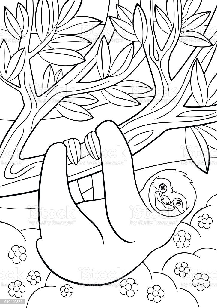 Coloring Pages Cute Lazy Sloth On The Tree Stock Illustration