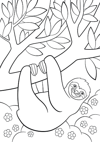 coloring pages cute lazy sloth on the tree stock illustration  download image now  istock