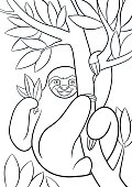 Coloring pages. Cute lazy sloth.