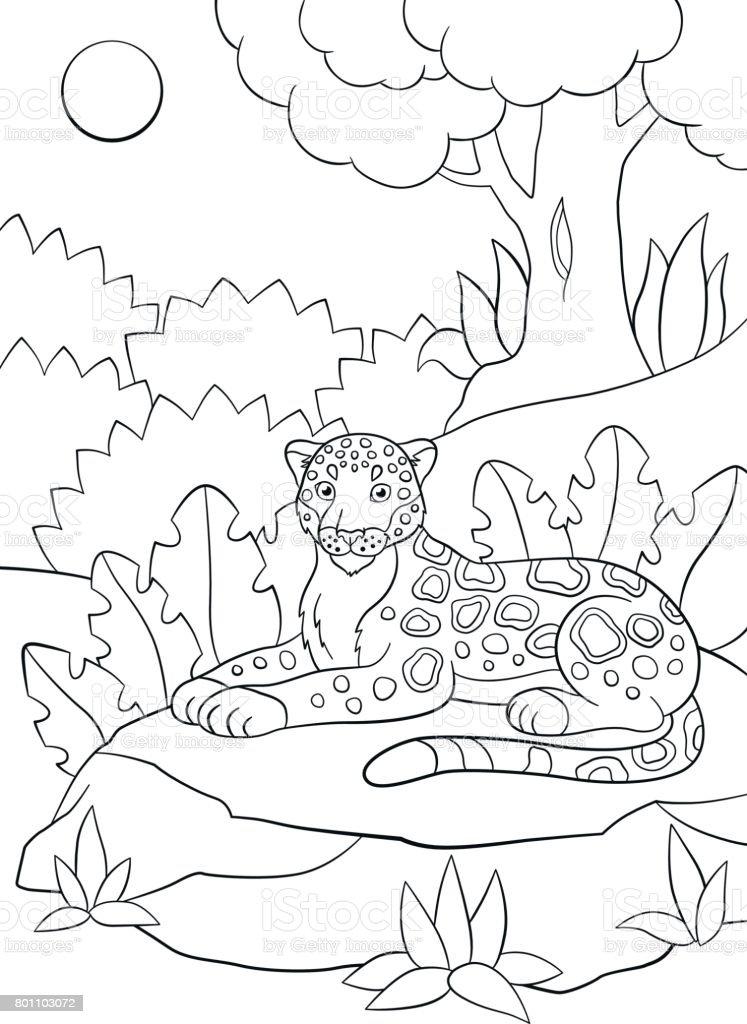 Malvorlagen Niedliche Gefleckte Jaguar Im Wald Stock Vektor Art