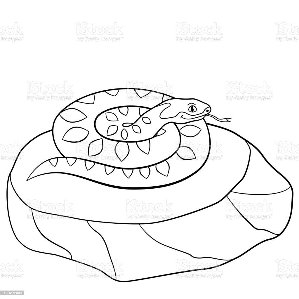 Malvorlagen Niedliche Viper Liegt Auf Dem Stein Stock Vektor Art und mehr  Bilder von Ausmalen