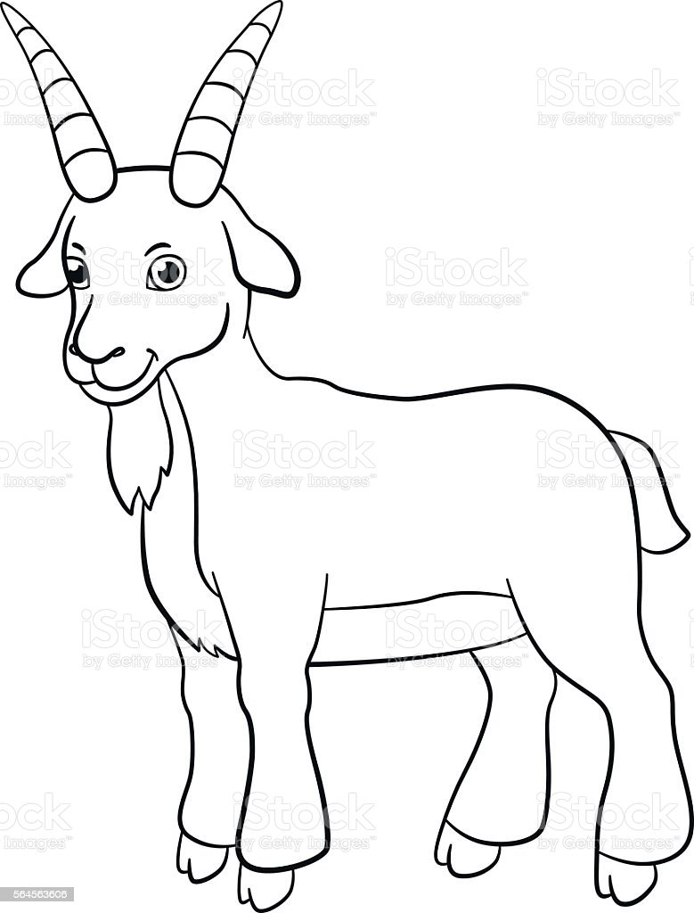Line Art Farm Animals : Coloring pages farm animals cute billy goat smiles stock