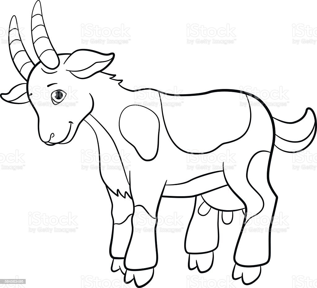 Coloring Pages Farm Animals Cute Goat Stock Vector Art & More Images ...