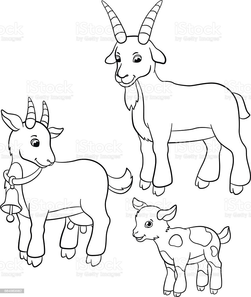 Attractive Coloring Pages Farm Animals Goat Family Stock Vector Art U0026 More Images Of  Agriculture 564563582 | IStock