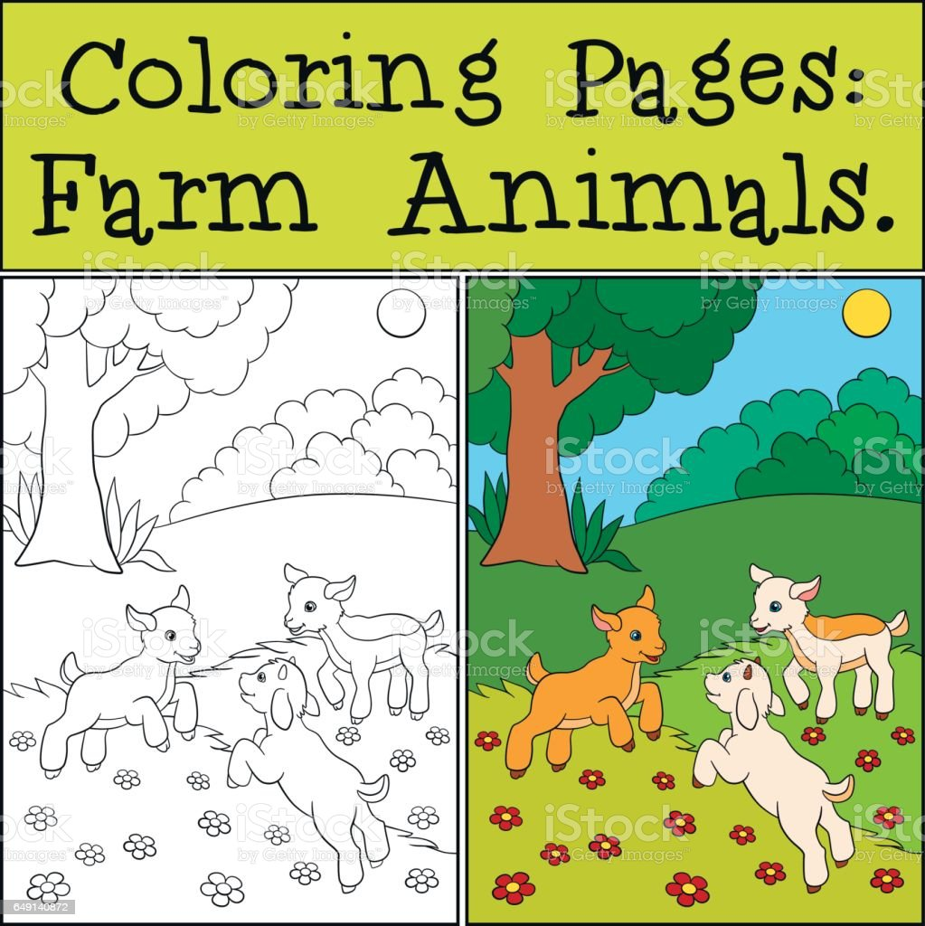 Coloring Pages Farm Animals Three Little Cute Baby Goats Stock ...