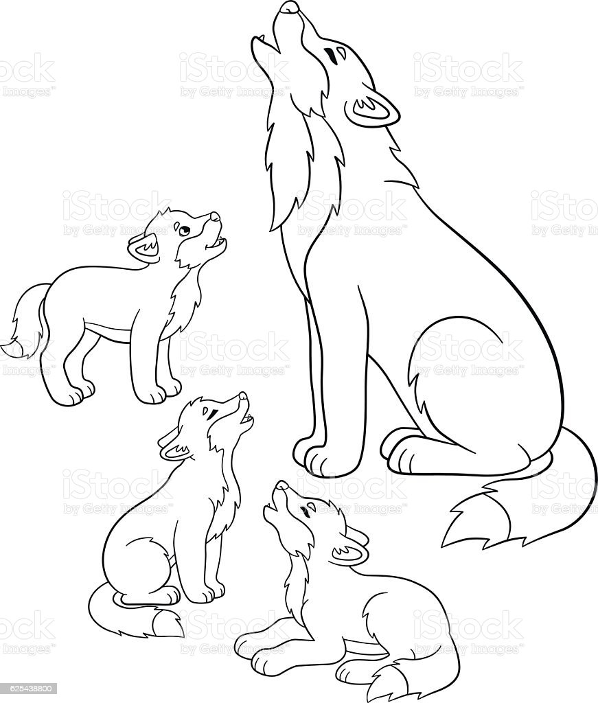 coloring pages father wolf howls with his little babies royalty free stock vector
