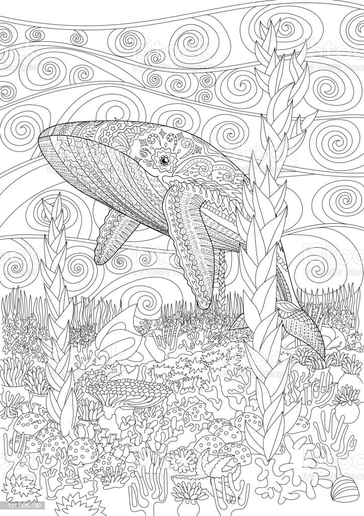 - Coloring Pages For Adult With Blue Whale Stock Illustration - Download  Image Now - IStock