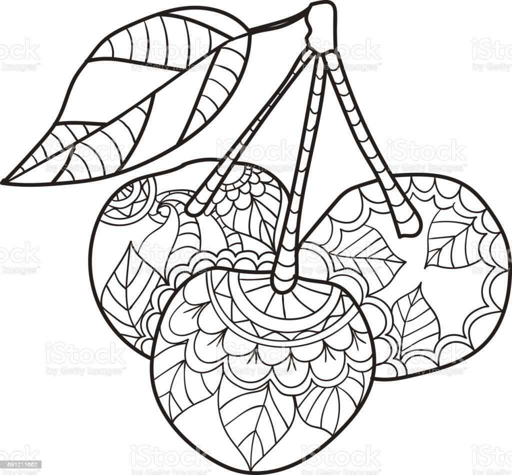 Coloring Pages For Adults Cherry Sketch Fruits Vector Illustration Royalty Free