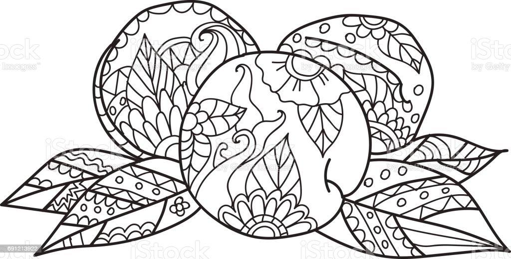 Yetişkinler Için Boyama Sayfaları Elle çizilmiş Kroki Tarzı şeftali